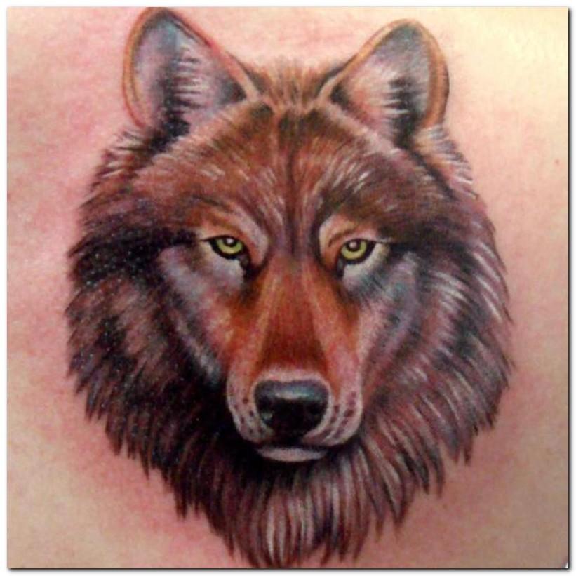 wolf tattoos photo - 1