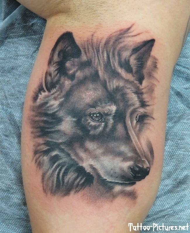 wolf tattoos photo - 37